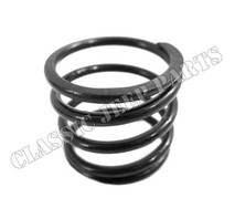 Steering column bearing spring
